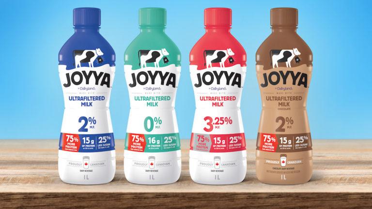 JOYYA-Dairyland-Lineup-768x432.jpg